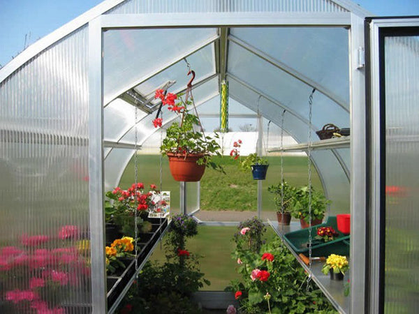 Interior of a small greenhouse with plenty of shelves and hanging plants to maximize space