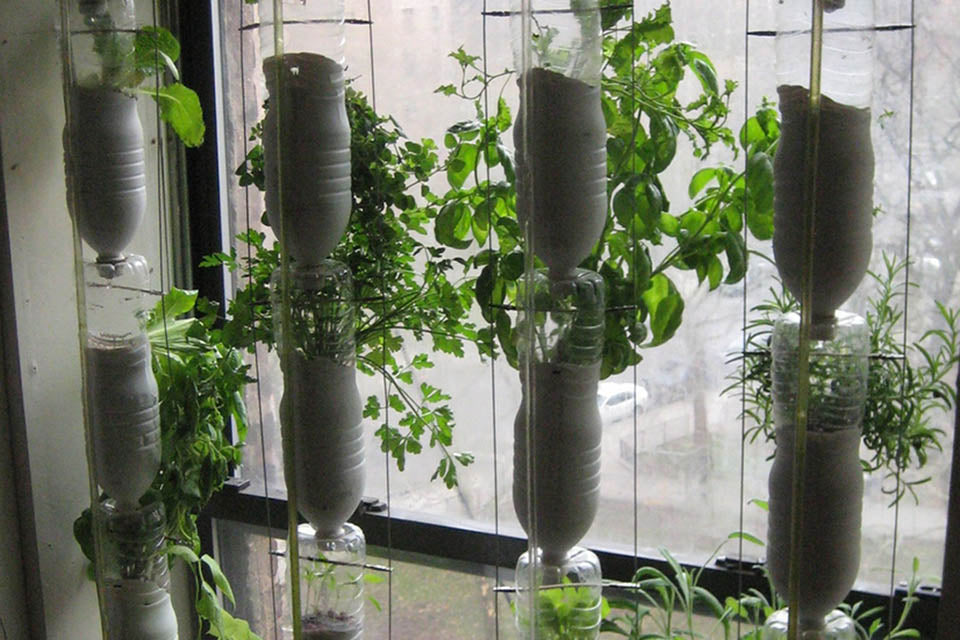 Window Mini Greenhouse made of recycled bottles