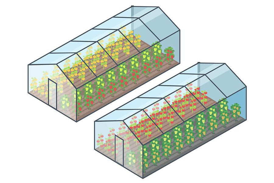 Graphic shows the concept of a glass-to-ground greenhouse with a wooden frame