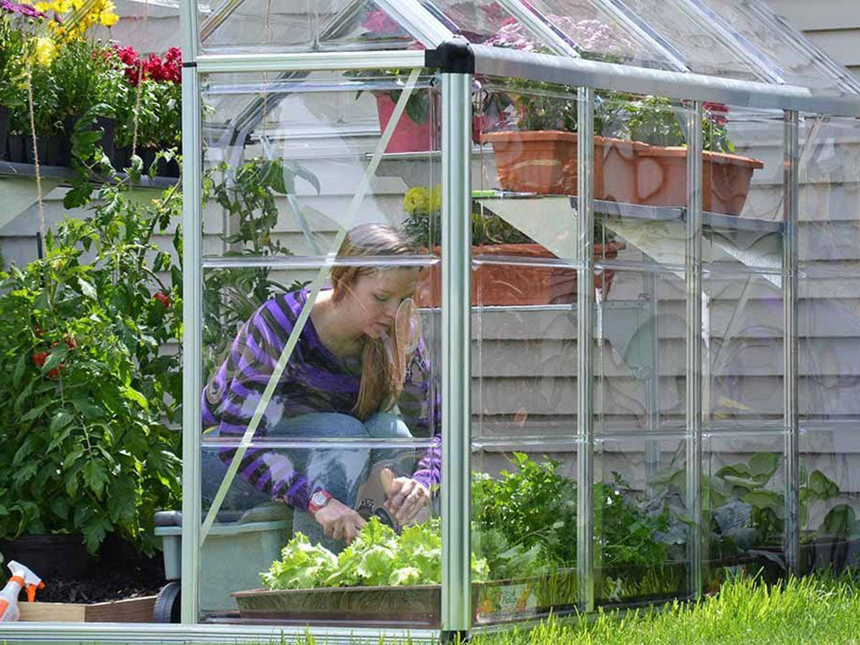 Palram 6ft x 8ft Snap & Grow Hobby Greenhouse - open doors - woman gardening inside the greenhouse