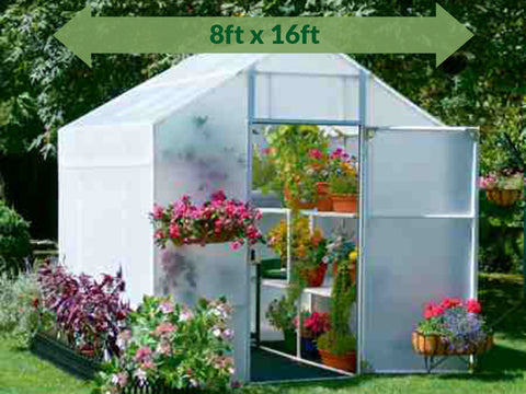 Solexx 8ft x 16ft Garden Master Greenhouse G-516 - open door with plants and flowers - green arrow on top showing dimensions