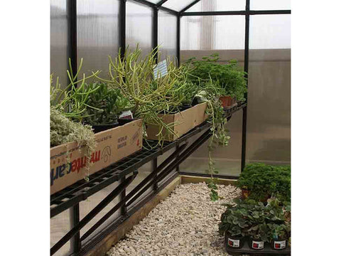 Riverstone Monticello Greenhouse 8x12 - Premium Package - interior view - with plants