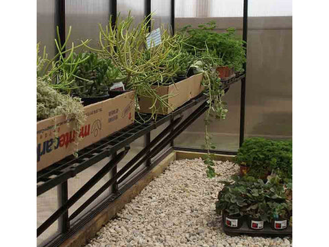 Riverstone Monticello Greenhouse 8x20 - Premium Package - interior view with plants