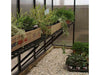 Image of Riverstone Monticello Greenhouse 8x20 - Premium Package - interior view with plants
