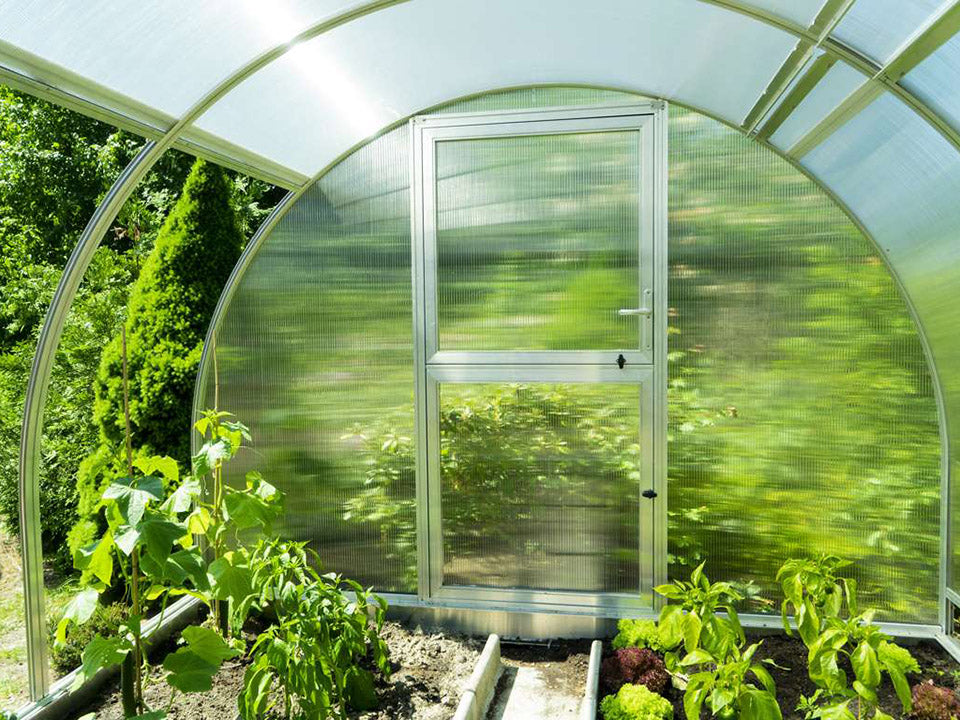 Interior view of Arcus 3 Greenhouse - Closed door - open left side panels - plants inside