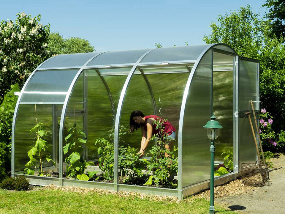 Side view of Arcus 3 Greenhouse - front door fully opened - three open sections of side walls with a woman gardening inside