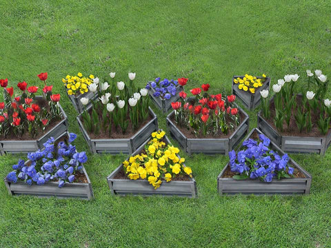 Image of Delta Park mix flower beds