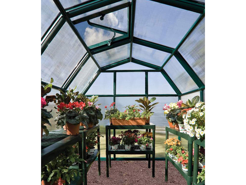 Rion 6ft x 12ft EcoGrow 2 Twin-Wall Greenhouse - HG7012 - interior view with plants