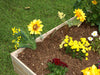 Image of Eden Garden Bed with flowers