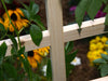 Image of Trellis with flowers