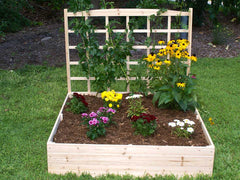 Eden Garden Bed with Trellis with plants