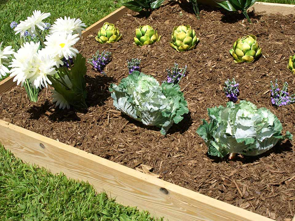 Eden Garden Bed with vegetables and flowers