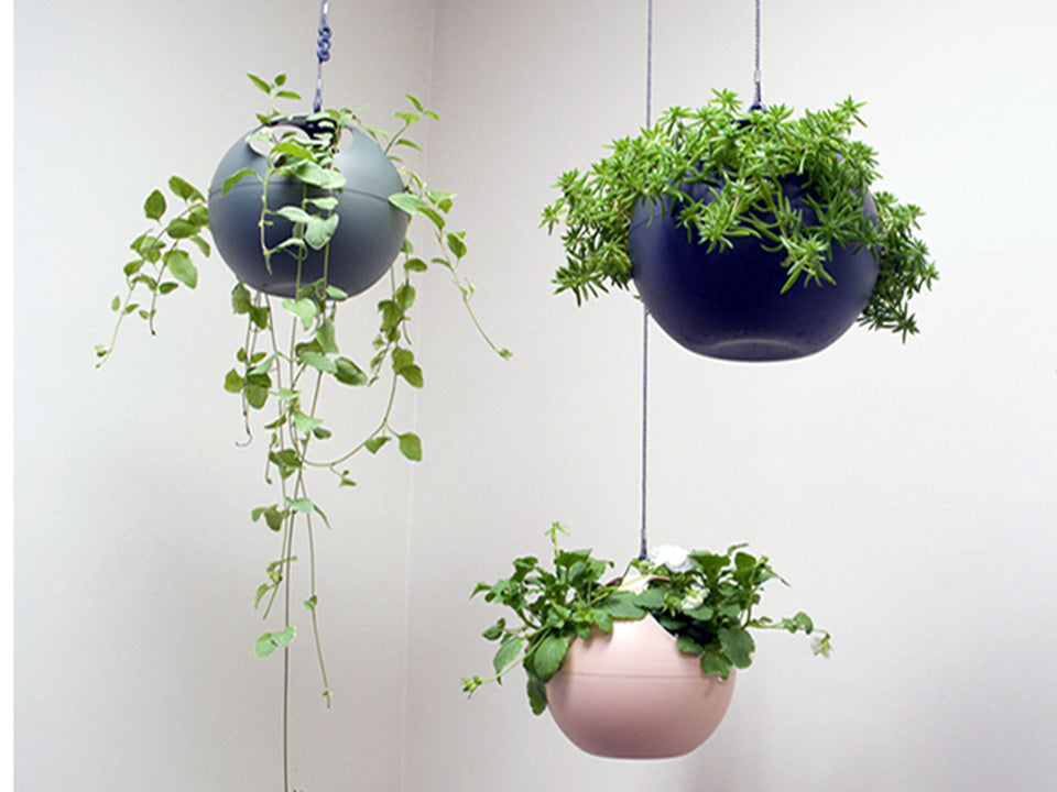Three ELHO Euro Hanging Planters