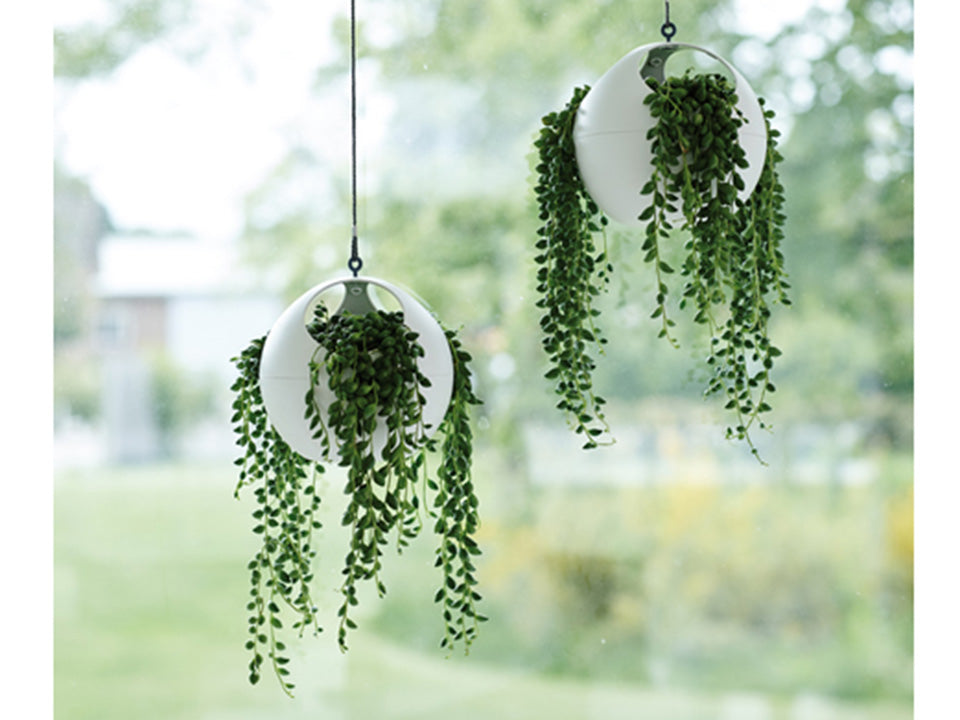 Two ELHO Euro Hanging Planters