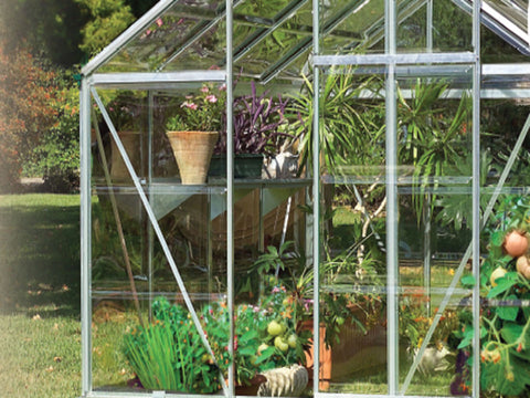 Image of Genesis Drip Irrigation System in a greenhouse with plants inside