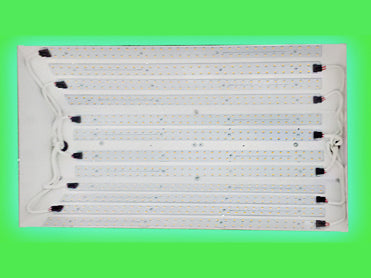 Image of Light bulbs (bottom) of the GENESIS LED Powered Grow Light System - white background