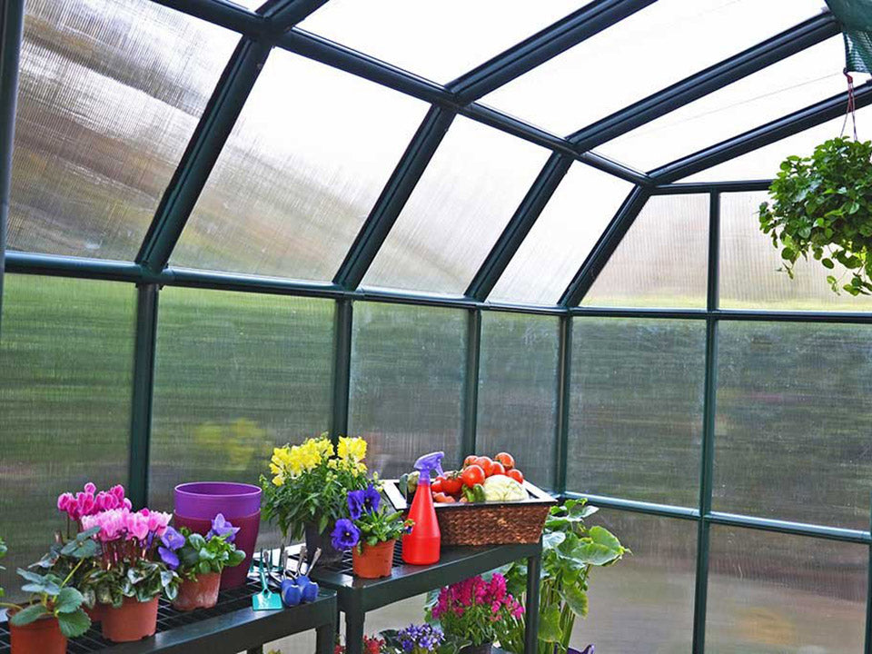 Rion Grand Gardener 2 Twin-Wall 8ft x 12ft Greenhouse HG7212 - interior view with plants