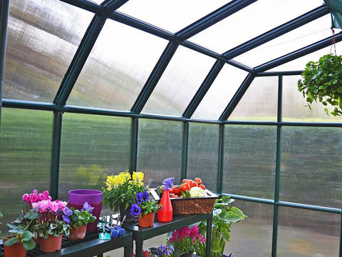 Rion Grand Gardener 2 Twin-Wall 8ft x 8ft Greenhouse HG7208 - interior view with plants and flowers