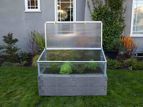 Grey Timber Raised Bed with Opened Year Round Cold Frame with plants inside