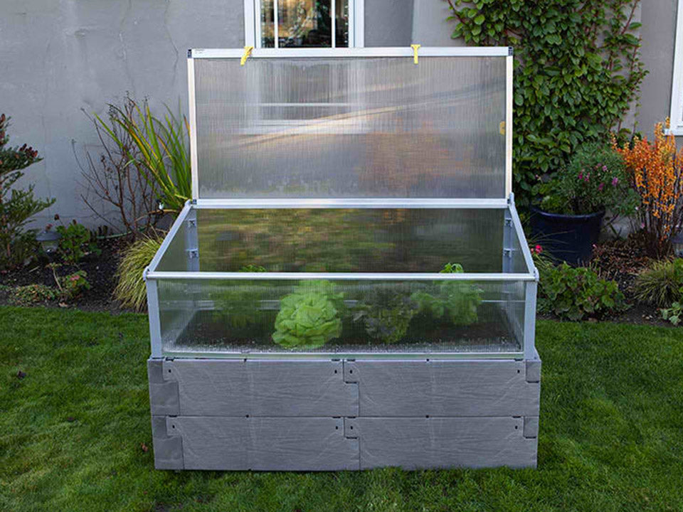 Open Gray Timber Raised Bed with Year Round Cold Frame and plants inside