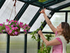 Image of Rion Hobby Gardener 2 Twin Wall 8ft x 20ft Hobby Greenhouse HG7120 - interior view - a woman arranging plants