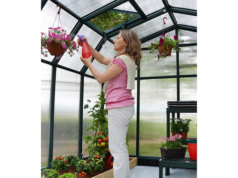 Rion Hobby Gardener 2 Twin Wall 8ft x 16ft Hobby Greenhouse HG7116 - interior view with plants and flowers - a woman watering the plants