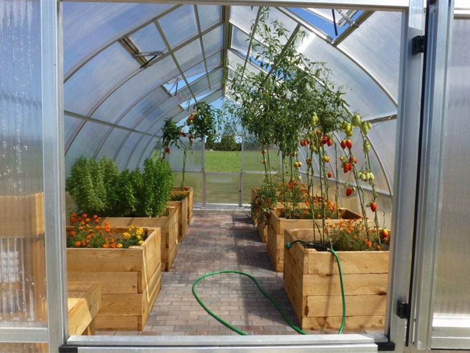 Hoklartherm Riga XL 5 Greenhouse 14x16 interior view with plants and raised beds inside