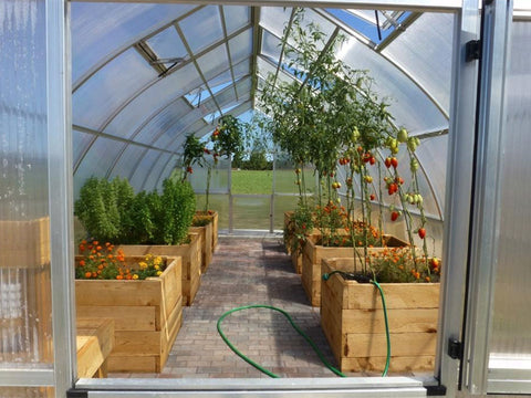 Image of Hoklartherm Riga XL 5 Greenhouse 14x16 interior view with plants and raised beds inside