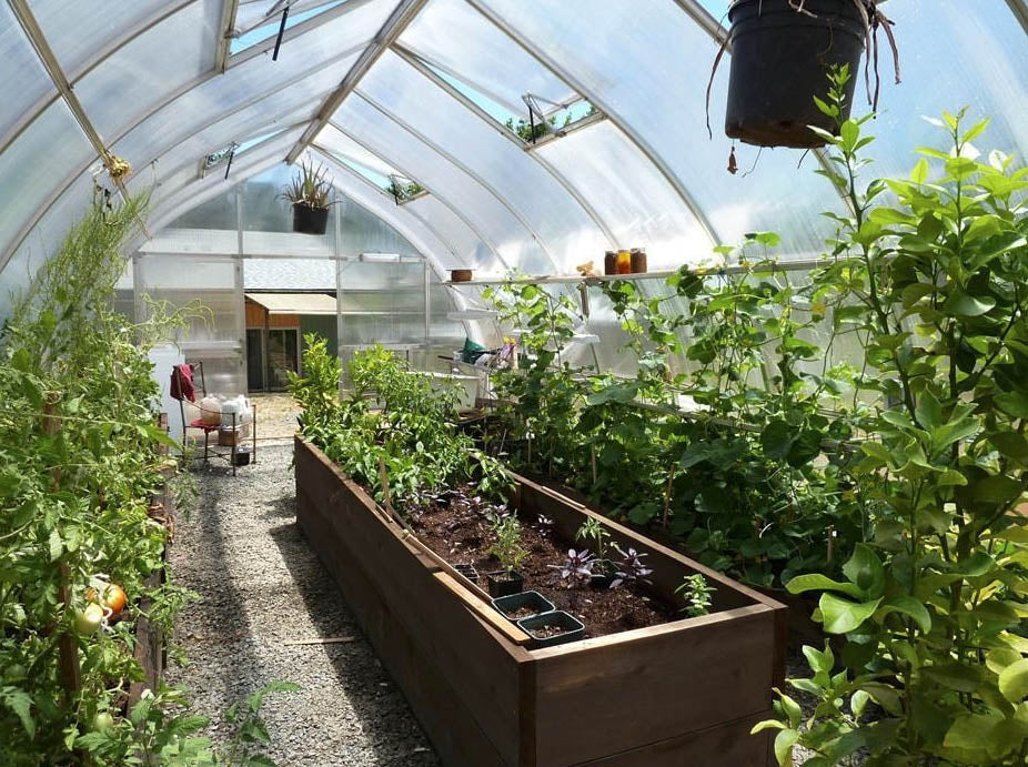 Hoklartherm Riga XL 8 Greenhouse 14x26 interior view showing plants plants on both sides and a raised bed in the middle