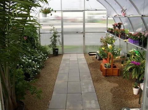 Image of Hoklartherm Riga XL 5 Greenhouse 14x16 interior view with plants and trees inside