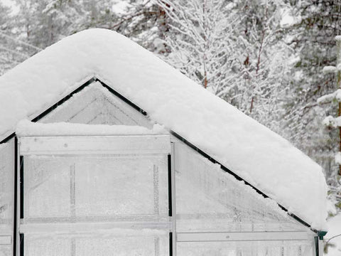 Palram Hybrid 6ft x 8ft Hobby Greenhouse-HG5508(G) - covered in snow
