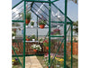 Image of Palram Hybrid 6ft x 8ft Hobby Greenhouse-HG5508(G) - close up interior view with plants inside