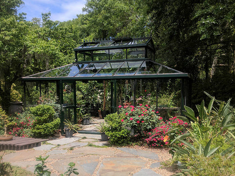 Black Janssens Cathedral Victorian Greenhouse 15ft x 20ft in a garden