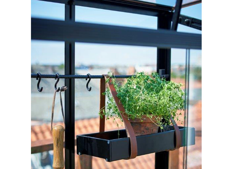 Interior View of Juliana City Greenhouse. Open roof window with a plant on a shelf
