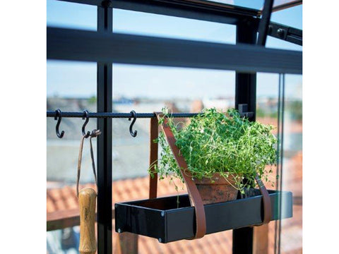 Image of Interior View of Juliana City Greenhouse. Open roof window with a plant on a shelf