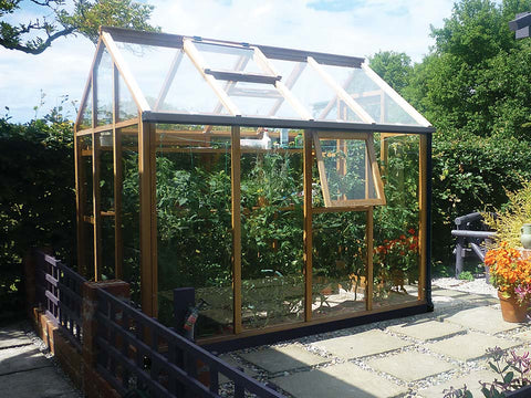 Image of Juliana Classic Greenhouse 6ft x 8ft - closed door - open roof vent and window - with plants inside - in a garden