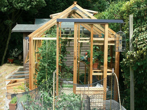 Image of Juliana Classic Greenhouse 6ft x 8ft - front view - open door, roof vent and window - with plants inside - in a garden