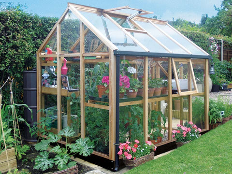 Image of Juliana Classic Greenhouse 6ft x 8ft - front and side view with open rood vent and closed door - with plants inside - in a garden