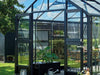 Image of Juliana Roller Shading Blind - Set of 2 - in a greenhouse
