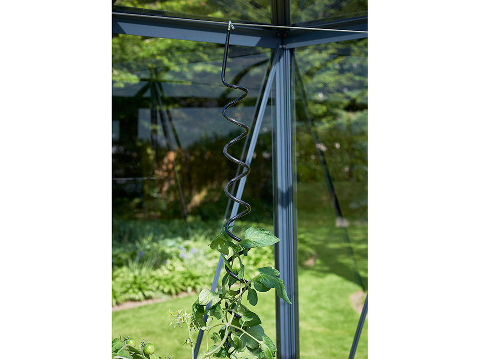 Juliana Flexible Plant Spiral installed on greenhouse frame with plant climbing up