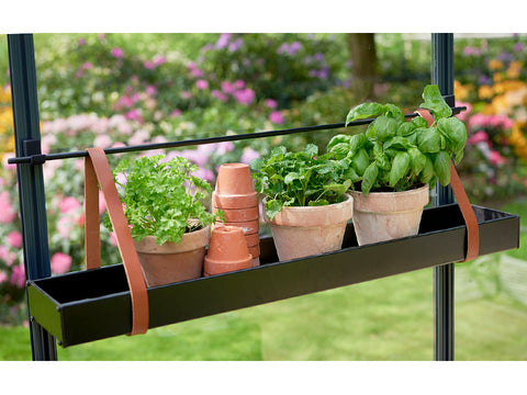 Image of Medium Juliana Hanging Shelf with Leather Straps with plants