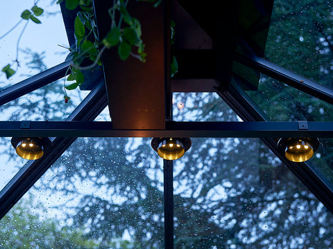 Image of Three Juliana Greenhouse Interior Solar Lights in a row (installed inside a greenhouse)