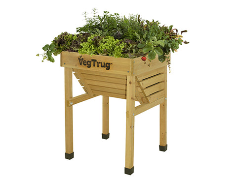 Kids VegTrug with plants