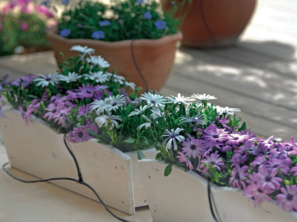 Monticello Growers Edition Greenhouse - drip irrigation system on flower pots