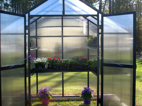 Image of View into the open Riverstone Monticello Patio Greenhouse 8x4