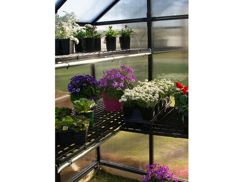Plants on shelves inside the Riverstone Monticello Patio Greenhouse 8x4