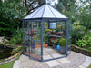 Image of Palram 7ft x 8ft Oasis Hex Greenhouse - HG6000 - in a garden