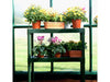 Image of Rion Prestige 2 Twin Wall 8ft x 12ft Greenhouse HG7312 - two tier bench with plants