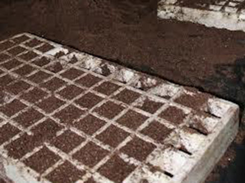 Image of RSI Hydroponic Floating Seeding Tray - with soil