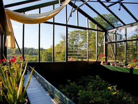Image of Janssens Retro Royal Victorian VI34 Greenhouse 10ft x 15ft - interior view with plants and flowers